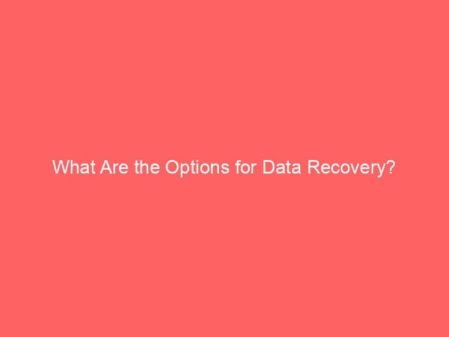 , What Are the Options for Data Recovery?